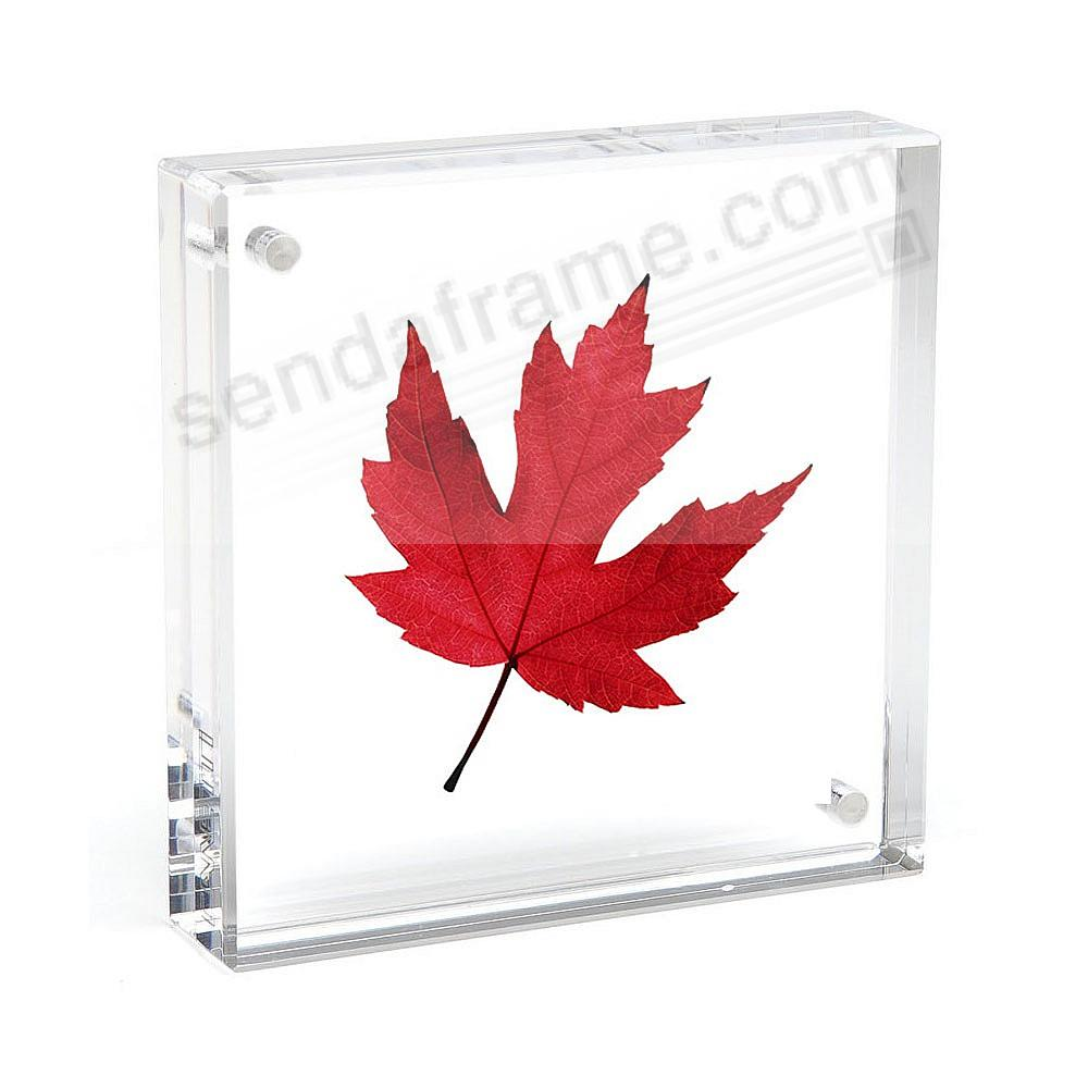 The original acrylic museum MAGNET FRAME<br>by Canetti® - now in 8x8 ...