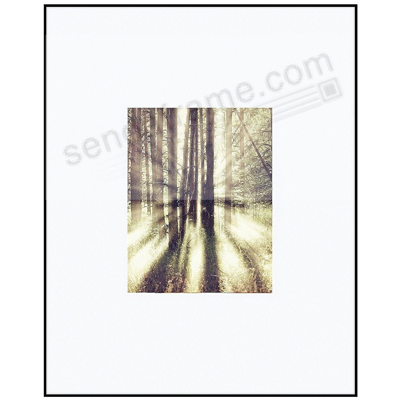 PHOTOGRAPHY metallic frame Matte-Black/White matted 16x20/8x10 by ARTCARE®