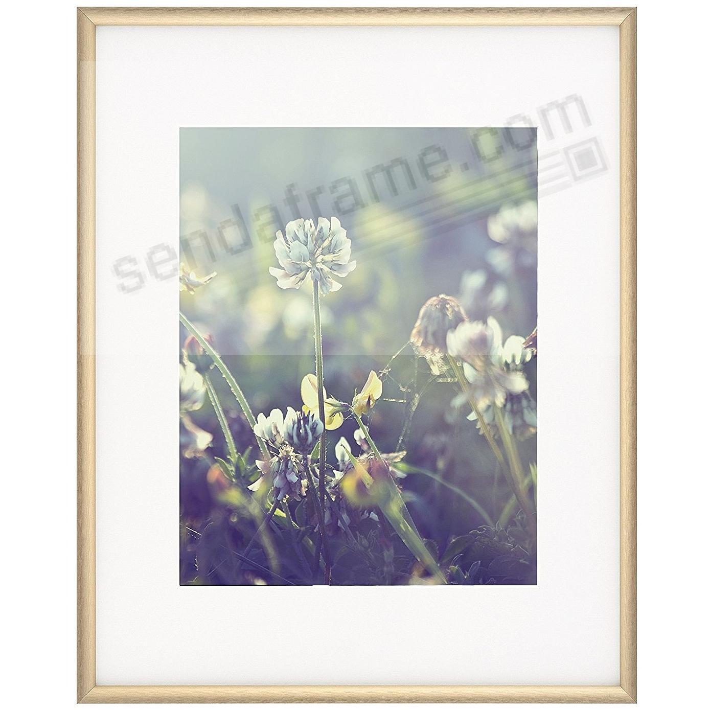 Satin-Gold COSMOPOLITAN matted metallic frame 16x20/11x14 from ARTCARE® by Nielsen®