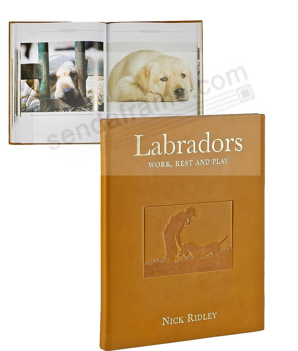 LABRADORS: Work - Rest - and Play special edition book in genuine brown full-grain leather