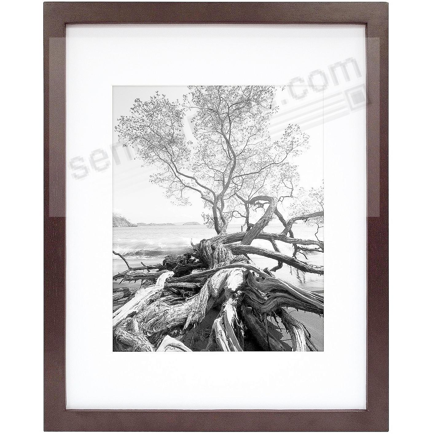 Art Shadow-Box 16x20/11x14 Walnut Wood frame by MCS®