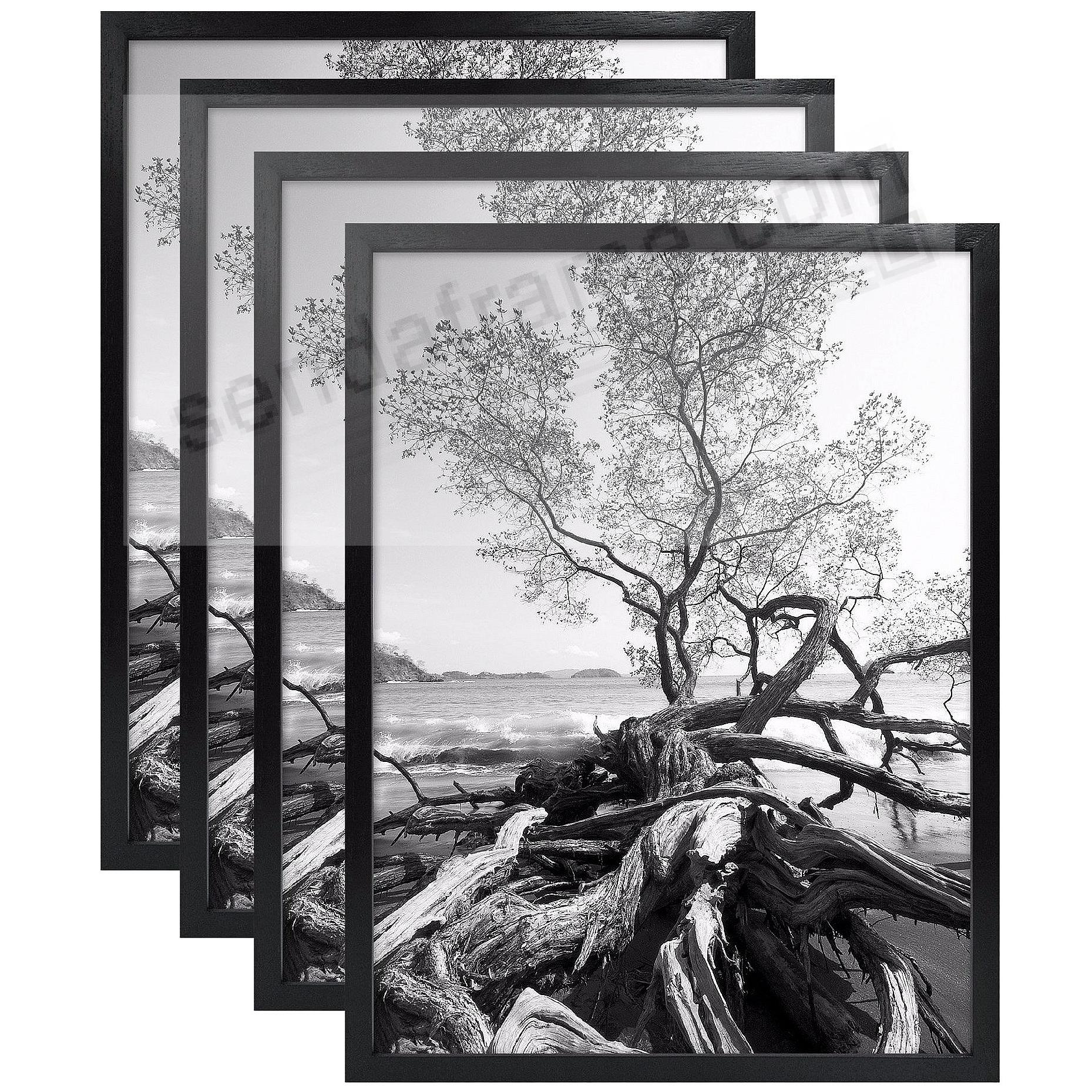 4-Pack) Art Shadow-Box 24x36 Black Wood frame with 1-3/8in depth ...