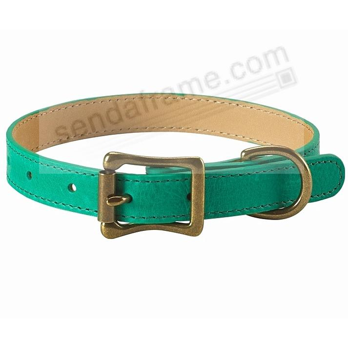 LARGE DOG COLLAR EMERALD-GREEN LEATHER 19-22in by Graphic Image™