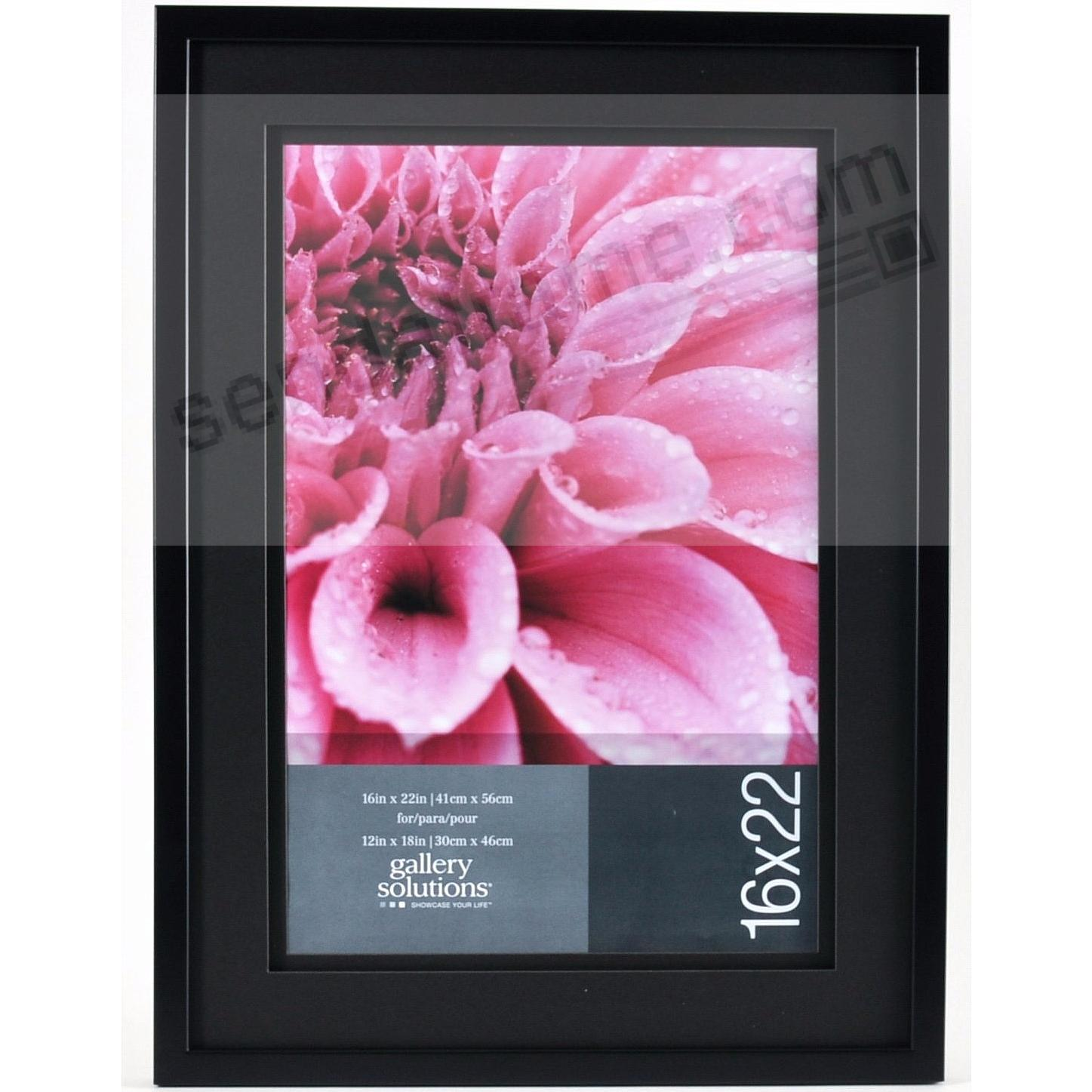 Black Wall 16x22/12x18 Frame with AirFloat Black Mat by Gallery ...