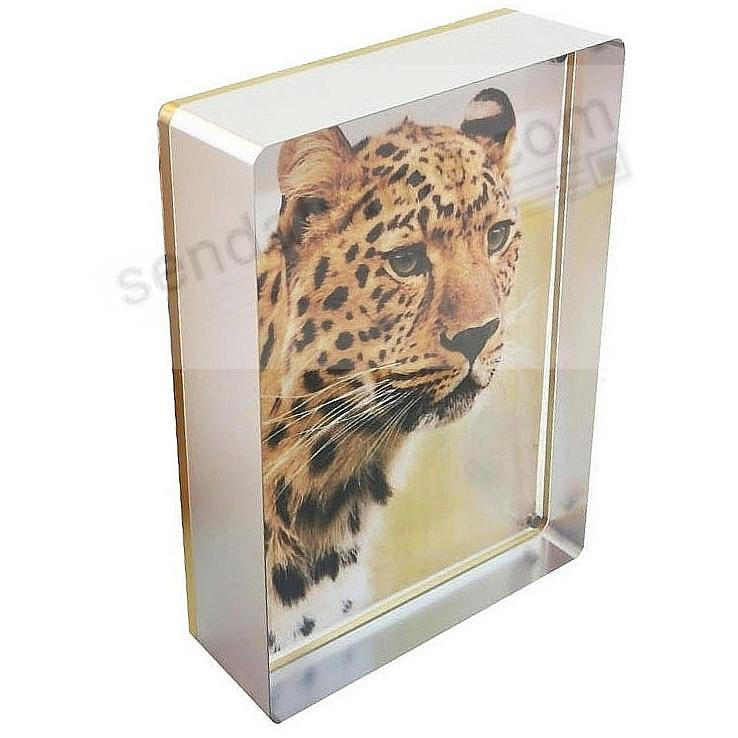The PRESTIGE MAGNET FRAME SILVER/Gold 5x7 by Canetti®