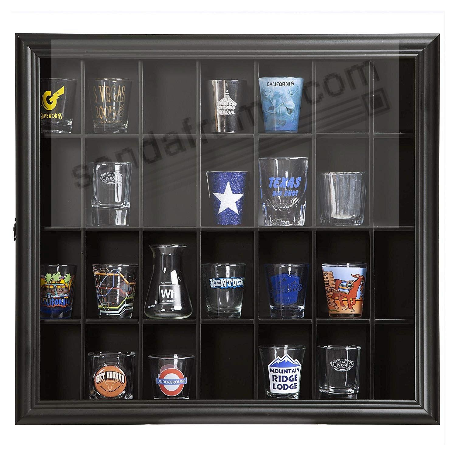 Gallery Solutions 18x16 Trinket Display Case with Hinged Front in Black