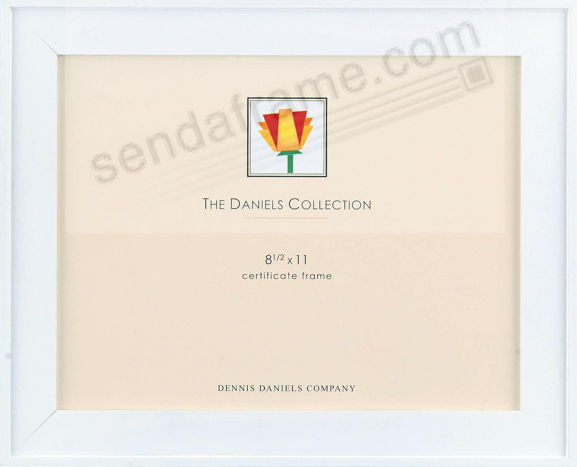 ONE-STEP gallery style frame in white by Dennis Daniels®