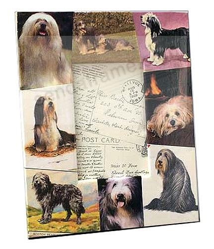 Vintage BEARDED COLLIE decoupage frame by Blankety Blank™