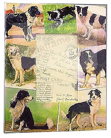 Vintage BORDER COLLIE decoupage frame by Blankety Blank™