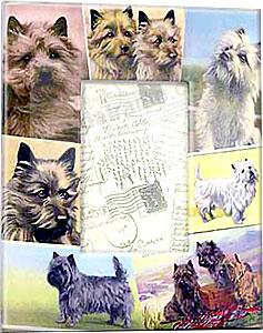Vintage CAIRN TERRIER dog decoupage frame by Blankety Blank™