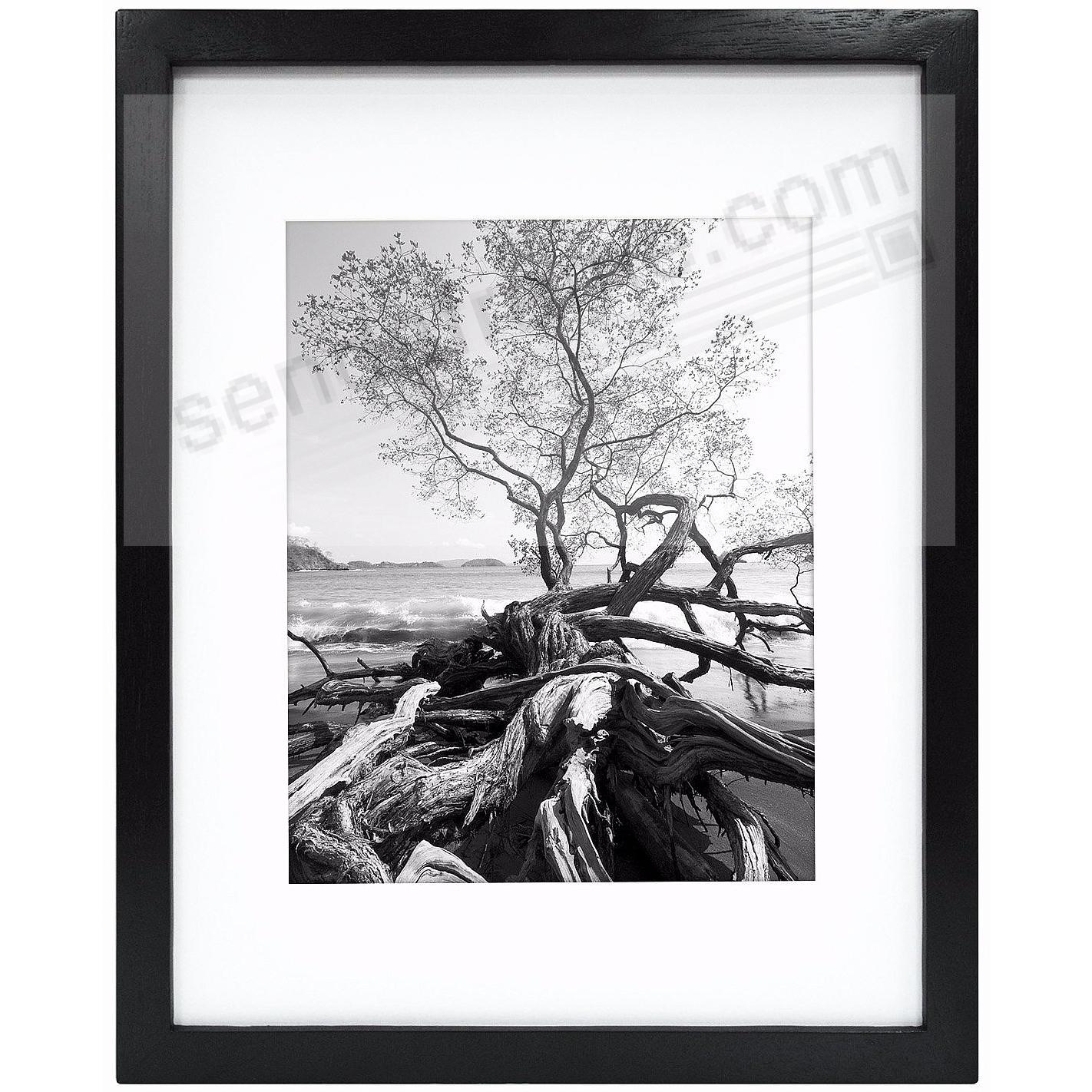 Art Shadow-Box 8x10/5x7 Black Wood frame w/1-3/8in depth by MCS ...