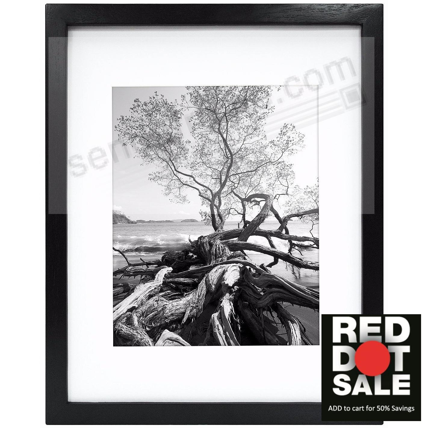 Art Shadow-Box 16x20/11x14 Black Wood frame w/1-3/8in depth by MCS ...