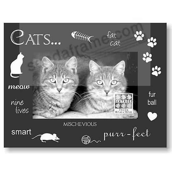 Cats Expressions Frame By Sixtrees 174 Picture Frames