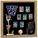Indoor MEMORABILIA CASE - Light Oak wood with black backing