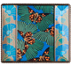 SEGUY BUTTERFLIES Glass Frame from the Metropolitan Museum� collection
