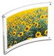 Curved MAGNET FRAME clear acrylic by Canetti�