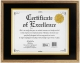 Gold Document frame 11x8� / 14x11 by Dax/Connoisseur�