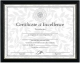 Black and Gold Document frame by DAX/Connoisseur�