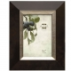 PAMINA chocolate styrene frame by Prinz�