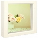Bright-White stain 12x12 Shadow Box for your print or collectibles by Dennis Daniels�