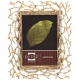 WHITMAN Antique Golden Twigs wallet-size frame by Prinz�