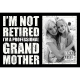 IM NOT RETIRED IM A PROFESSIONAL GRANDMOTHER Distressed-Wood Box Frame by Sixtrees�