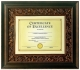 Tuscan-Bronze Matted Document Frame by DAX/Connoisseur�